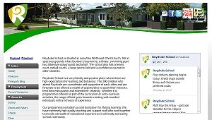 Screen capture of Roydvale school old website