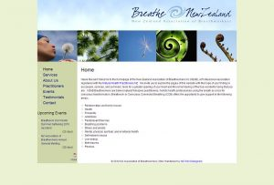 old NZAB website