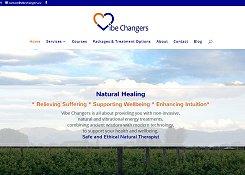 small screenshot of VibeChangers website